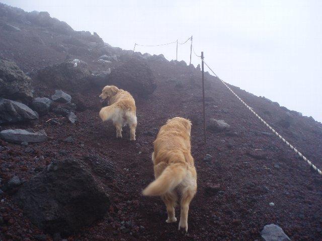 富士山8合目 104