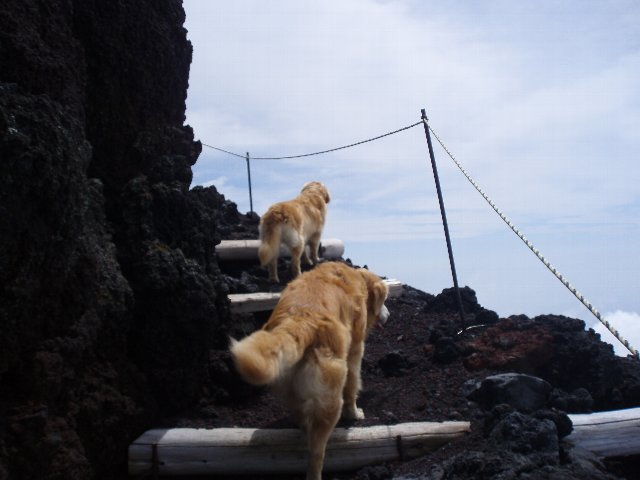 富士山8合目 124