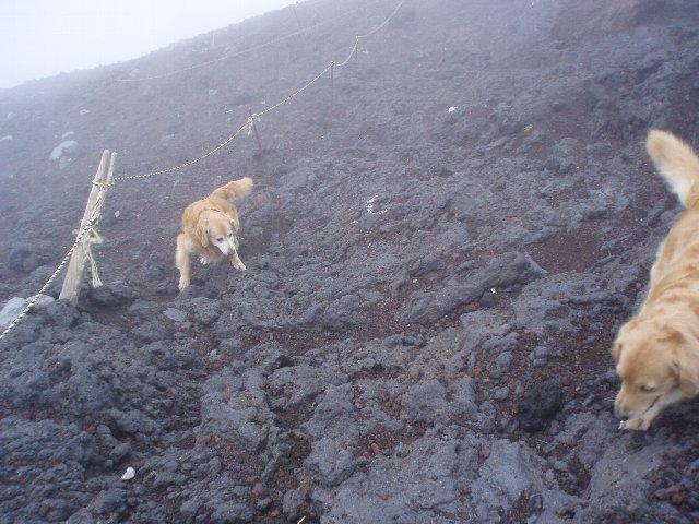 富士山8合目 162