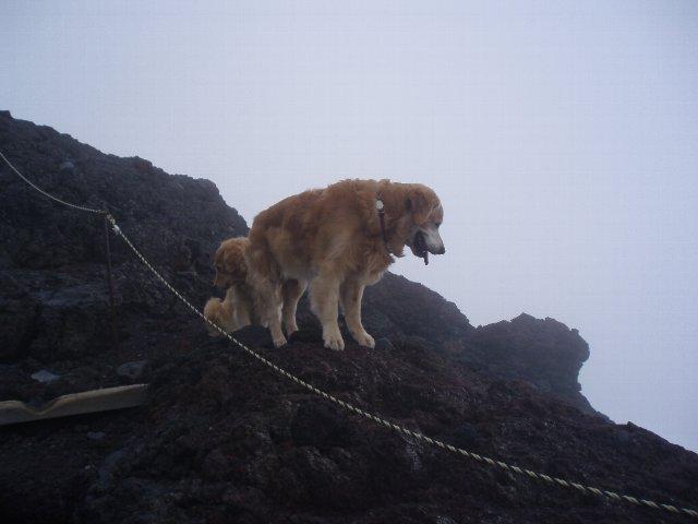 富士山8合目 163