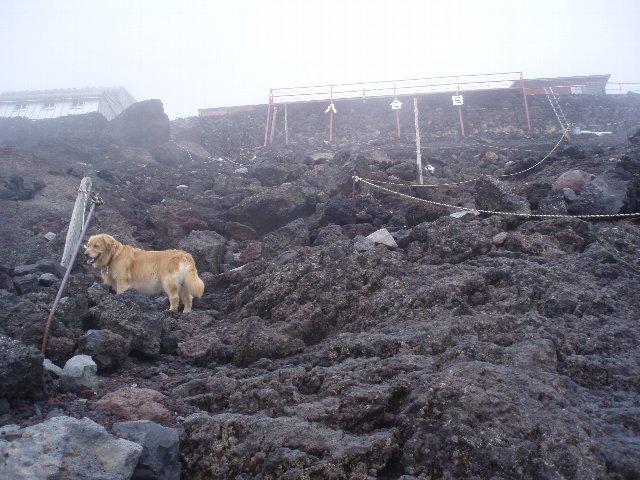 富士山8合目 164