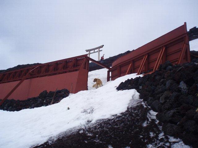 富士山8合目 169