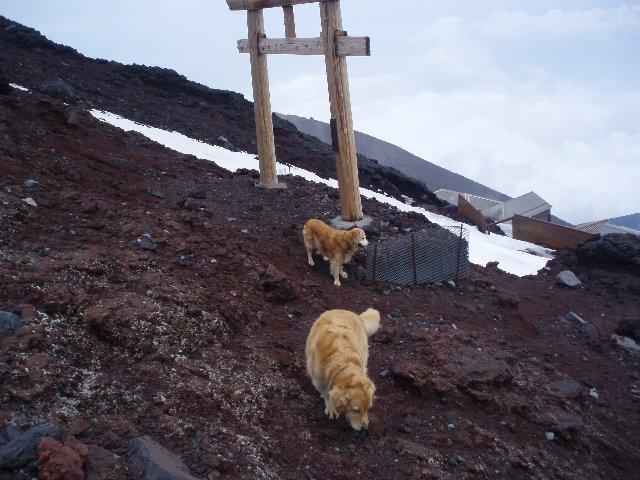 富士山8合目 172