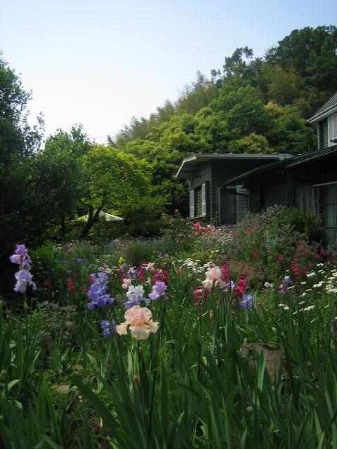 2008年4月箱根 サラフローラ 022