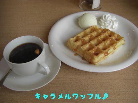 CIMG5465.jpg
