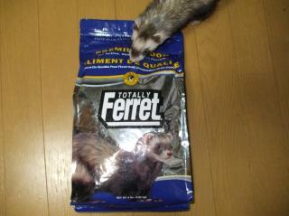 フェレットの餌 トータリー