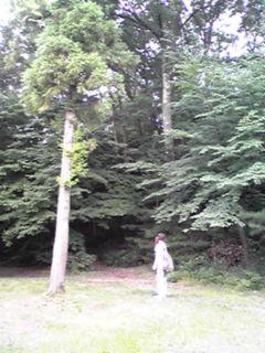 20080809001211.jpg