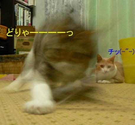 笹身部長&雲丹専務