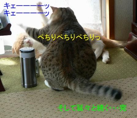 雲丹専務&笹身部長