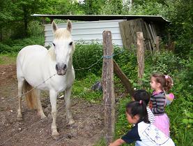 白馬と子供達