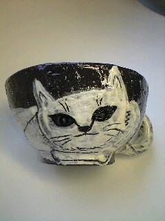 黒土 白猫 前向き