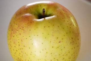 りんごごりら
