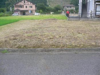 土地 草刈り