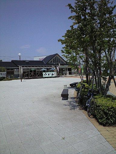 71302.jpg