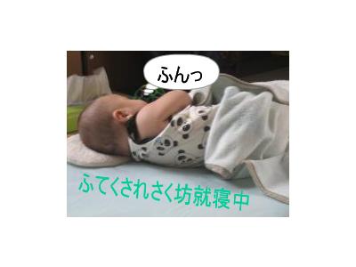 newphoto88.jpg