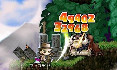Maple6408a.jpg