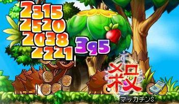 Maple6424a.jpg