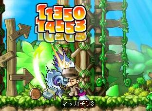 Maple6446a.jpg