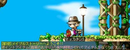 Maple6452a.jpg