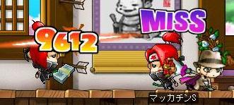 Maple6460a.jpg