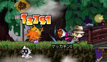 Maple6465a.jpg