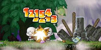 Maple6468a.jpg