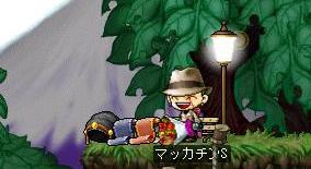 Maple6469a.jpg
