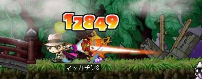 Maple6474a.jpg