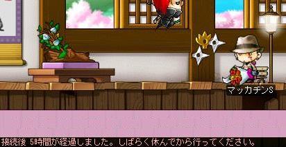 Maple6494a.jpg