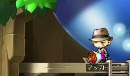 Maple6537a.jpg