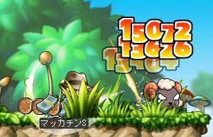 Maple6553a.jpg