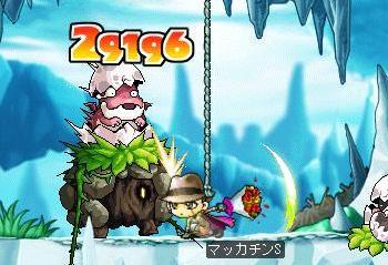 Maple6612a.jpg