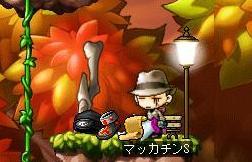 Maple6641a.jpg