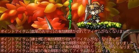Maple6642a.jpg