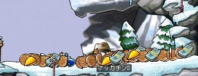 Maple6659a.jpg