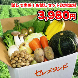 00000322_photo1.jpg