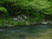 20080522D.jpg