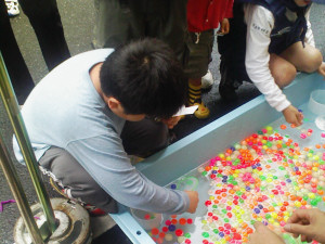 20080525_02.jpg