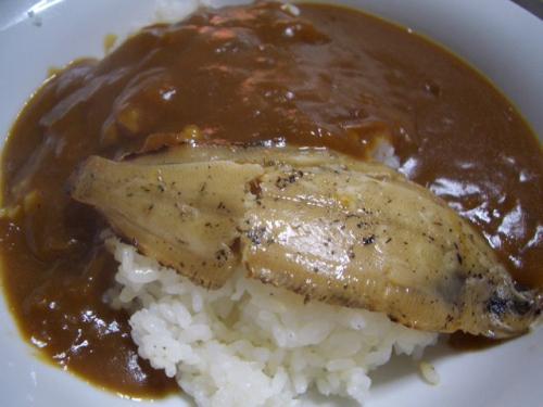 どんちっち鰈(カレイ)入 カレー