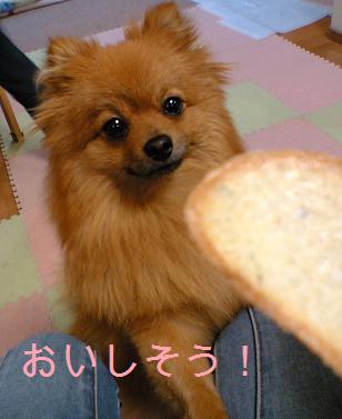 私も食べたい!