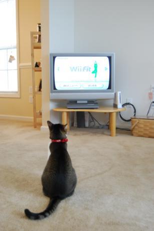 Wiiボードは もう少し後ろよ!
