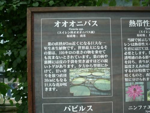 神戸 100
