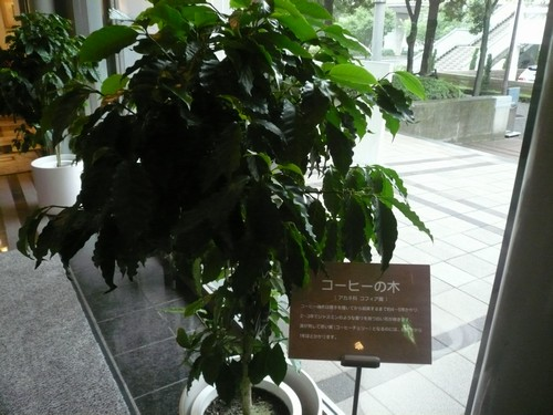 神戸 135
