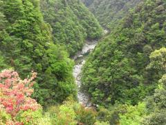 香川旅行7