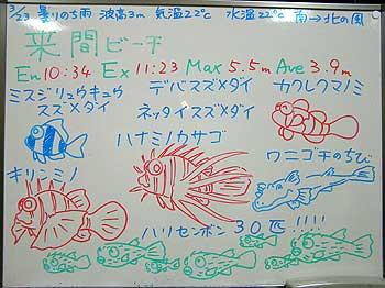 080323blogb.jpg