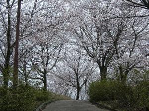 2008-016-kofun.jpg