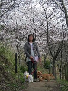 2008-027-kofun.jpg