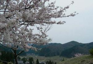 2008-031-kofun.jpg