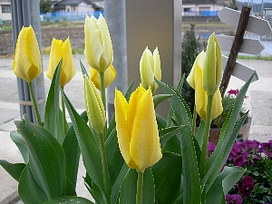 2008-04-12 004