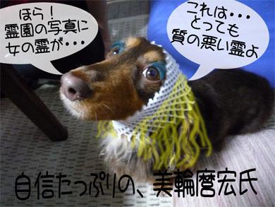 miwa4.jpg
